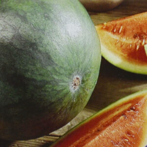 Melon d'eau Sugar Baby bio