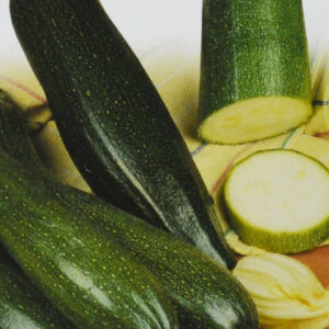 Zucchini Black Beauty bio